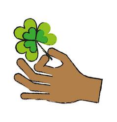 Hand holding shamrock or clover leaf saint vector