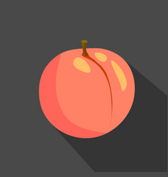 peach cartoon flat icondark background vector image vector image