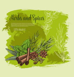 poster of spices and herb seasonings vector image vector image