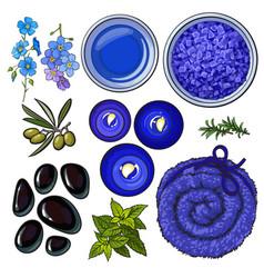 Blue set of spa salon accessories - basalt stones vector