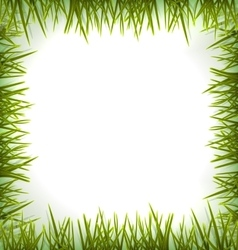 Realistic green grass like frame isolated on white vector