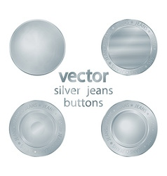 set of classic jeans silver sewing buttons vector image