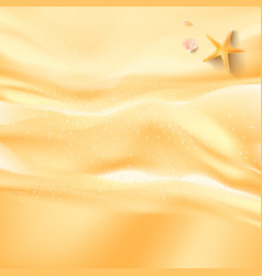 Abstract background sand beah starfish shell and vector