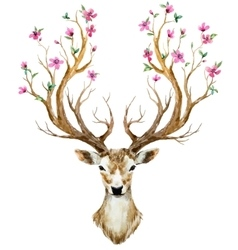 Watercolor hand drawn deer vector
