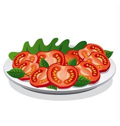 tomato salad vector image