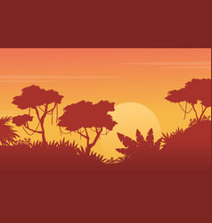 beauty landscape jungle at sunset silhouette vector image vector image