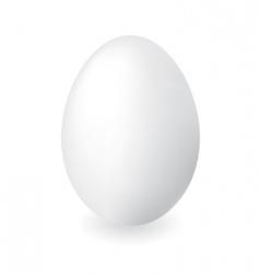 Duck egg vector