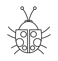 Isolated bug design vector
