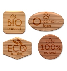 Eco natural product wooden labels vector