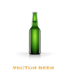 light beer bottle vector image vector image