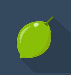 lime cartoon flat icondark blue background vector image vector image