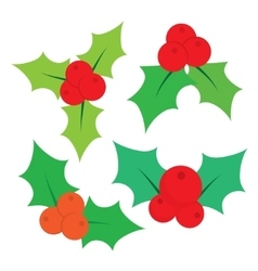 Set of christmas holly leaves vector