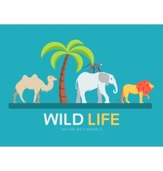 Wild life in flat design background concept lives vector