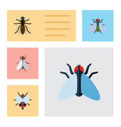 Flat icon buzz set of buzz mosquito housefly and vector