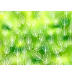 Nature abstract blurred background vector image vector image