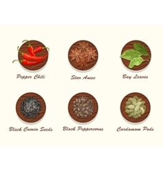 Set of different kinds of spices on wooden board vector