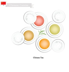 Chinese traditional tea set popular dink in china vector