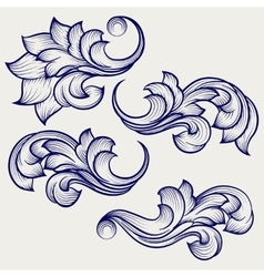 Floral baroque engraving elements vector image vector image