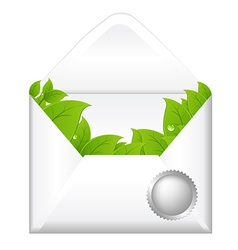 Open envelope with leaves vector