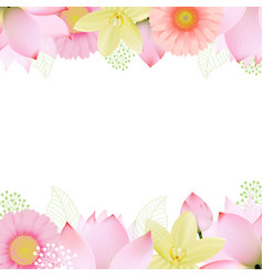 Flowers borders vector