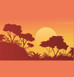 Beauty scenery jungle with tree silhouette vector