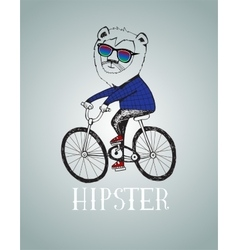 Hipster lion riding by bicycle vector