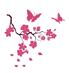 Twig cherry blossoms and butterflies vector