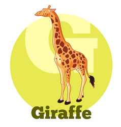 Abc cartoon giraffe vector