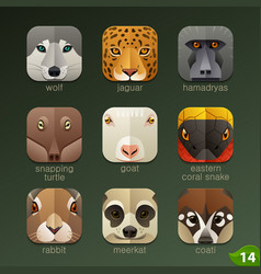 animal faces for app icons-set 14 vector image