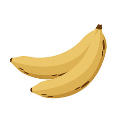 Banana nutrition healthy image vector
