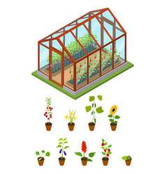 greenhouse with flowers and plants isometric view vector image vector image