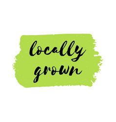locally grown logo or sign vector image