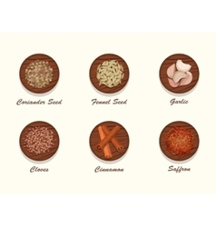 Set of different kinds of spices on wooden board vector image vector image