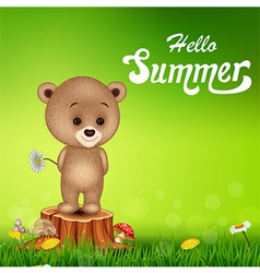 Hello summer background with little bear vector image
