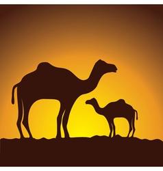 Caravan of camels image design vector