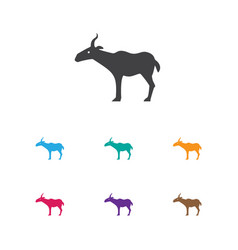 of zoo symbol on antelope icon vector image