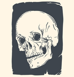 Isolated skull on vintage broken pape vector