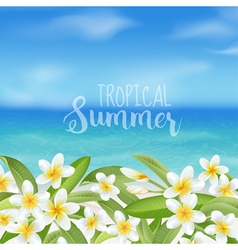Background beach banner tropical flower vector