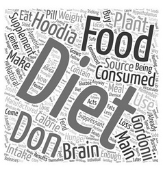 Hoodia diet supplement word cloud concept vector