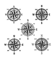 icons of marine nautical navigation compass vector image