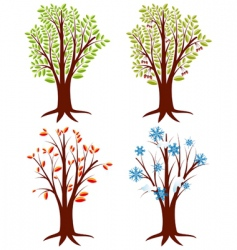 tree seasons vector image vector image