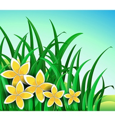 A garden with big yellow flowers vector
