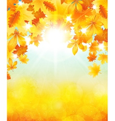 Autumn sun vector