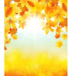 Autumn sun vector image