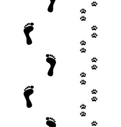 Prints of feet and paws vector image