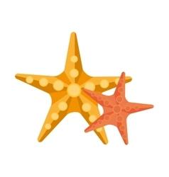Yellow and orange starfish graphic vector
