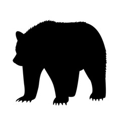 Animal bear abstract vector