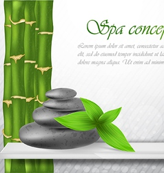 Zen stone with bamboo vector image