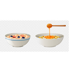 Cereal and honey in bowls vector