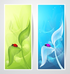 Creative banners with ladybird on leaf vector image